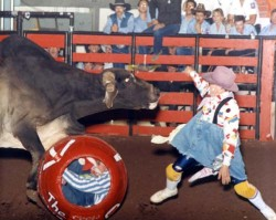 Loyd Ketchum Bullfighting